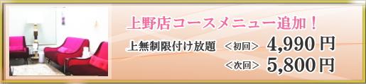 メニュー追加のお知らせ|上野店キャンペーン情報